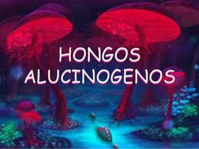 hongos alucinogenos nombres