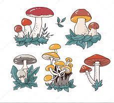 imagenes de hongos dibujados