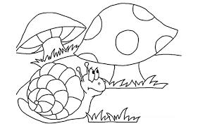 hongos dibujados a lapiz
