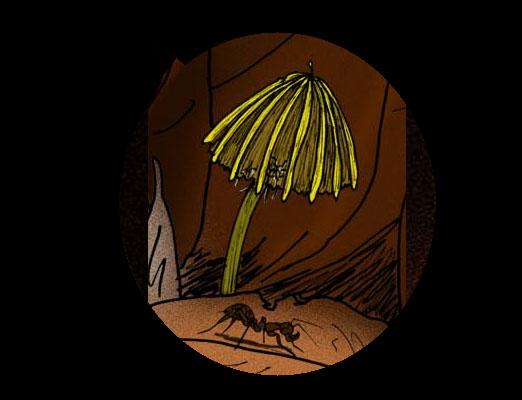 hongos extintos