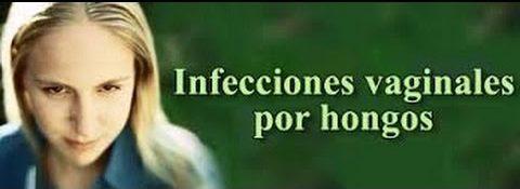 infecciones por hongos como la candida albicans