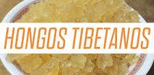 Hongos tibetanos